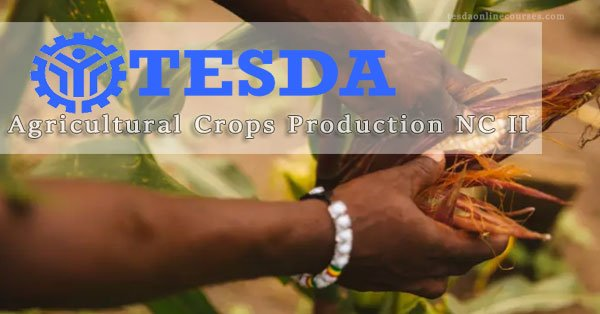 Tesda Agricultural Crops Production NC II – Learn skills in planting, growing, and harvesting